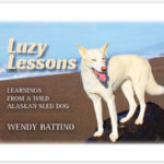 NEW Luzy Lessons Book!