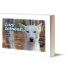 Meet Luzy and our NEW Book!